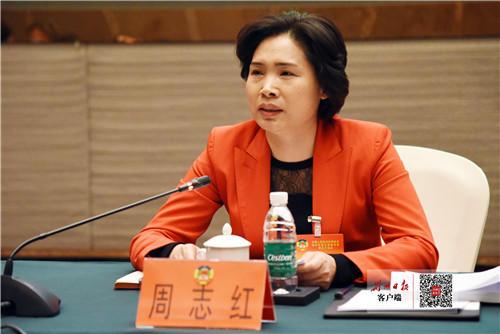 周志红参加市政协联组讨论时强调 聚力聚焦聚智推动荆州高质量发展