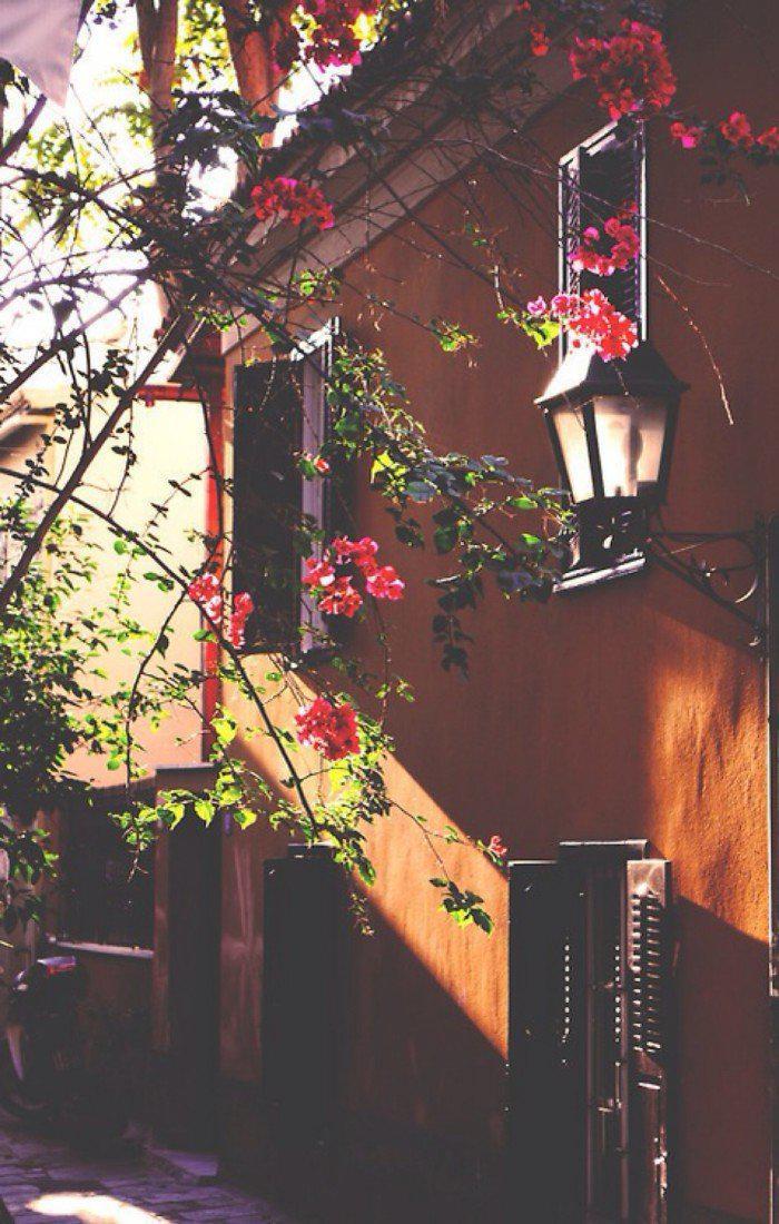 落地窗,窗内,洒了一地的明媚,窗外,繁衍了满地的苍翠……