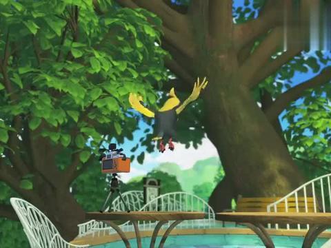 宇宙护卫队:两只大鸟布置观景台,同时看上对方东西,便抢了起来
