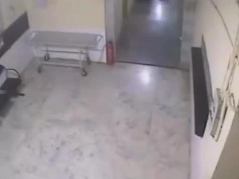 医院监控:豹子追狗狗冲进屋里,也不知发生什么事了?