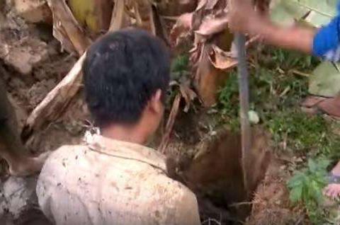 男子在香蕉树下挖坑, 跳下去抓出来一物,众人不淡定