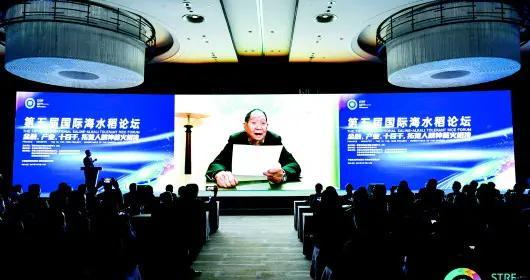 海水稻产业化推广启动 技术创新平台将落地青岛