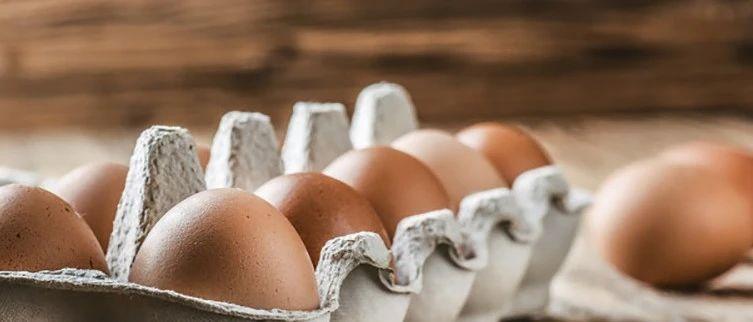 发烧的人不能吃鸡蛋?真相是……