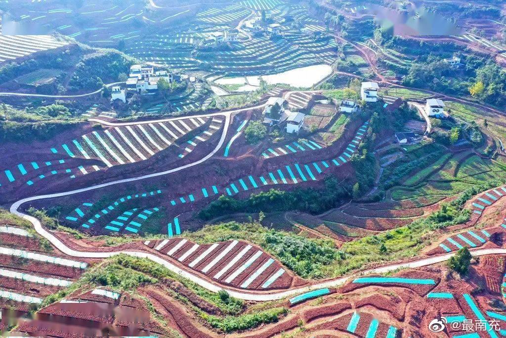 仪陇第十一站:双胜镇花椒现代农业园区项目