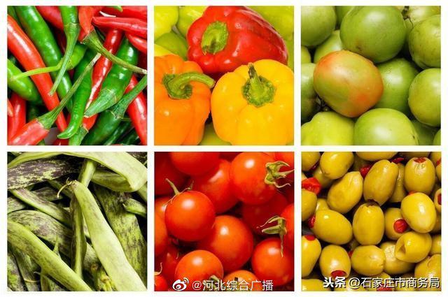 1月17日,石家庄市主要蔬菜品种批发价与天津、寿光基本持平,略高于北京、郑州