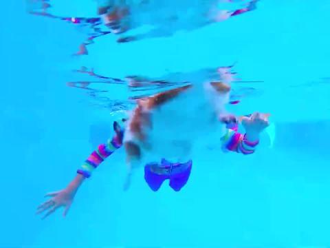 小可爱教狗狗游泳,这下好玩了