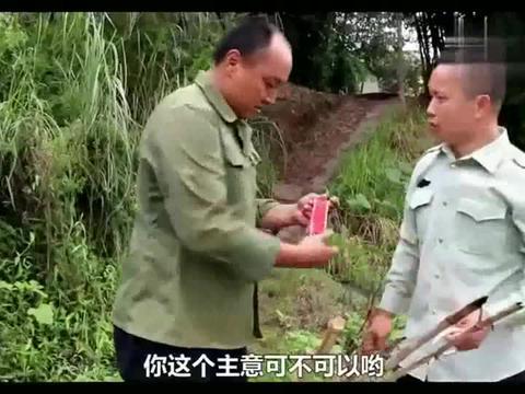 搞笑四川:驼背家田里稻谷被鸟吃,老表发明这个驱鸟神器,笑懵