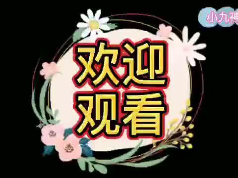 """脱口秀女王李雪琴和梗王王建国的""""CP""""舞台之旅"""