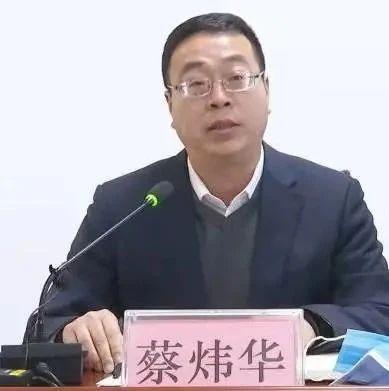 蔡炜华提名任涿州市市长