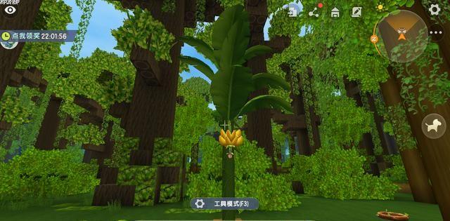 迷你世界:玩家亲测植物特性,乔木成陆地之最,苔藓隐藏强大功能