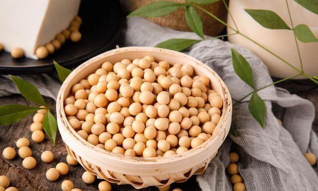 同样是豆制品,腐竹和豆皮到底有啥区别?口感差很多!