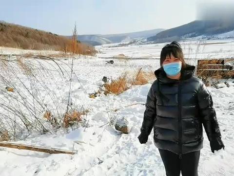 东北零下30度,大山里的蜜蜂如何过冬?养蜂大哥告诉你,真奇妙!