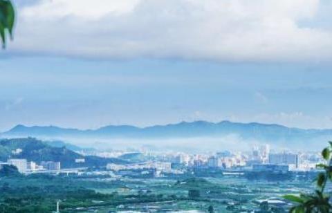 """深圳喜迎一员""""猛将"""",是亚洲最大养鸽基地,当地市民抱上大腿了"""