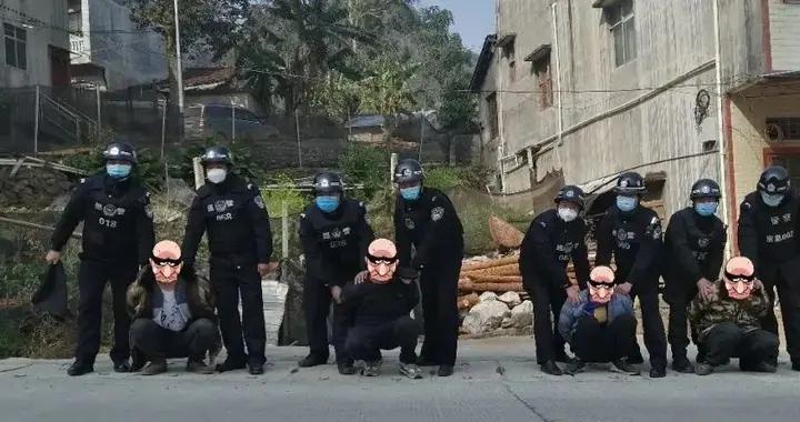走私活牛还打人抢手机……广西警方打掉一个边境涉恶犯罪团伙