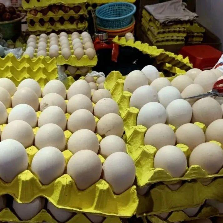 海口市场鸡蛋确实涨价了!