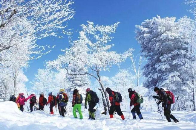"""黑龙江一巨型公园走红门票免费,被称为""""北方石林"""""""