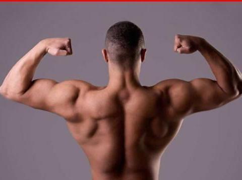 长期不锻炼肌肉会失去吗?
