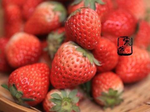 """草莓季,购买草莓有技巧,记住""""4看1闻"""",不买""""喂药""""草莓"""