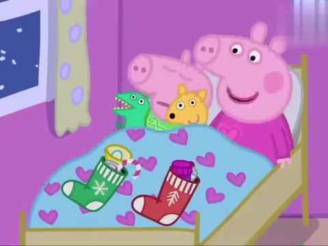 动漫:社会猪打开了圣诞礼物,可它是递小鹦鹉的,社会猪很伤心