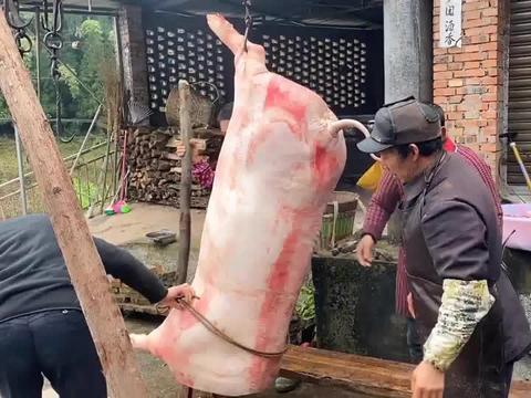 回趟娘家几百斤大肥猪,就这样被我拉回自己家了