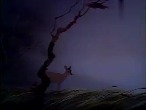 鹿妈妈侦查了草地后,确定安全了,叫小鹿一起出来玩啦!