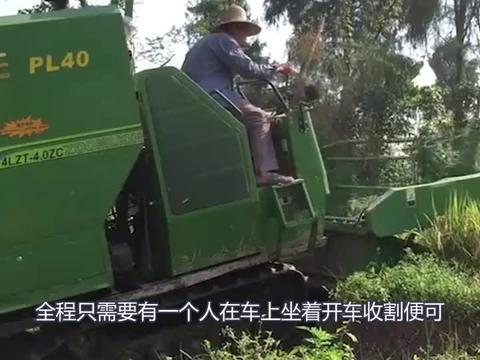 21岁大学生发明小型水稻收割机,收割打包一次成型,售价17000元