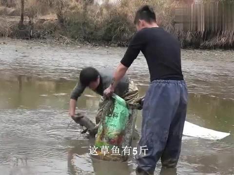 农村华子 :2亩大的鱼塘,3年了第一次干塘,看看里面的鱼值多少