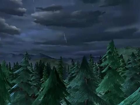 下雨天去看星星,毛毛都无语了