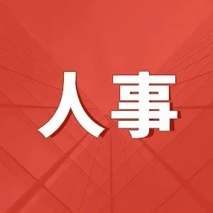 商务部 国家电网 中国联通主要领导人员任职调整