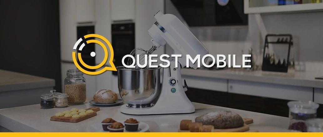 """QuestMobile2020 小家电行业品牌营销洞察报告:新消费人群拉动品类创新,国货品牌凭借KOL""""种草+直播""""突围"""