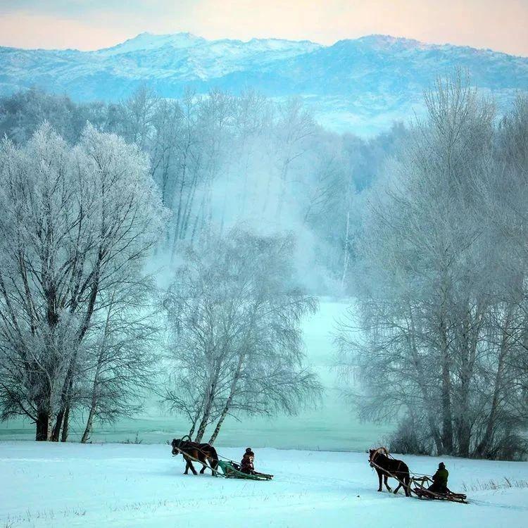 在雾凇小镇最美的季节里,我们一起相约布尔津