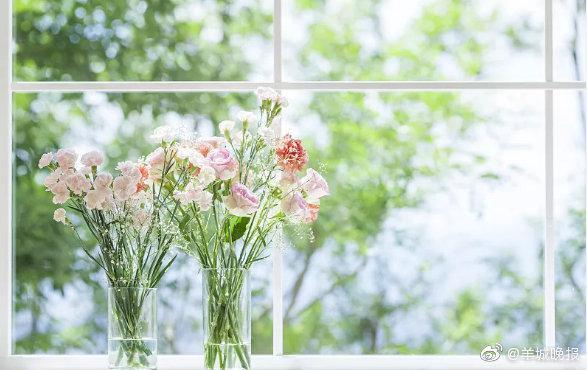 希望你兴致盎然地与世界交手,一直走在开满鲜花的路上 ……