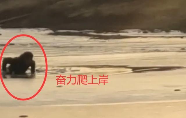 河北一冰面上,男子骑三轮连人带车掉进水中,拍摄者围观哄笑
