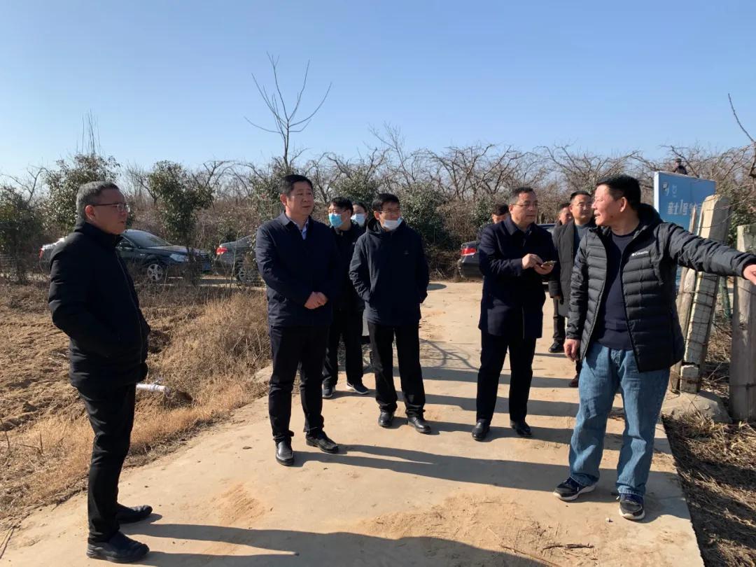 新野县领导调研指导2021年桃花节、郁金香节筹备工作