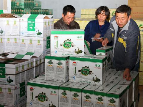 宁夏石嘴山市 农业保险让农户 放心种 放心养