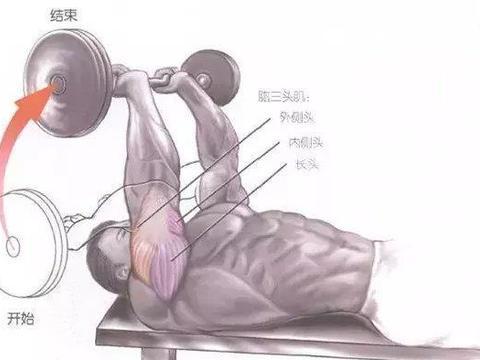 专减拜拜袖的动作,臂屈伸,6个动作练起来,紧致手臂赶走蝴蝶袖