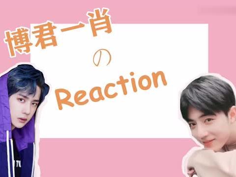 【博君一肖 Reaction 伪视频通话,超甜!】纯路人公正公开