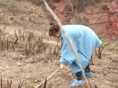 """虞书欣下地干农活穿鞋套,可有谁注意她的""""鞋底""""?"""