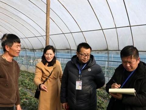 罗平县:开展蔬菜、水果抽样检测 把好农产品质量安全关