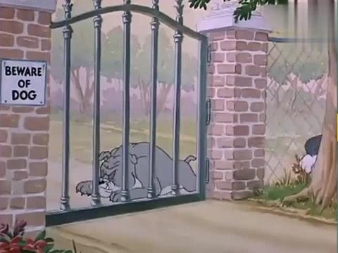 猫和老鼠:狗哥有点呆萌啊,光能看见一个鱼竿,人哪去了!