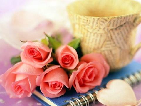 1月下旬,桃花不谢,放手旧情,寻找真爱的4大星座,余生幸福甜蜜