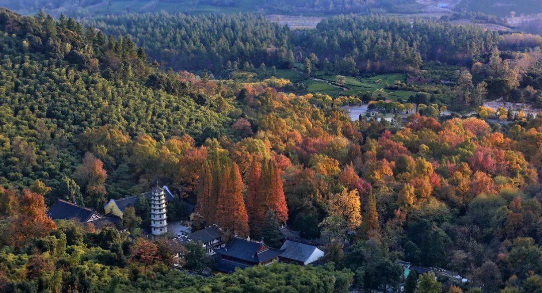 灵峰度假区是国家级旅游度假区,面积52平方公里……
