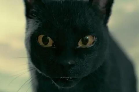顶级特效的新剧《长安伏妖》能否超越《妖猫传》