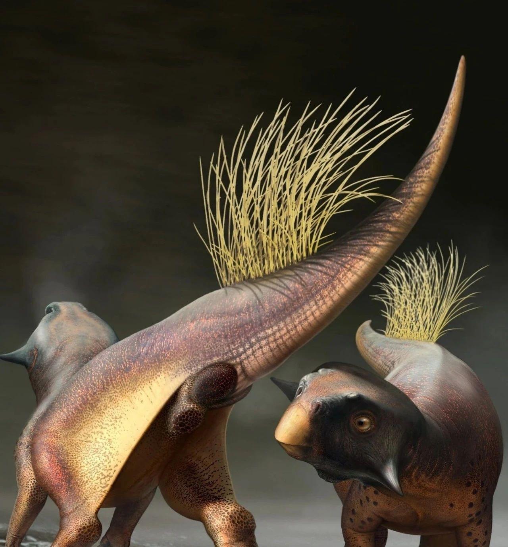 """1.2亿年后,人类终于首次知道恐龙的""""菊花""""长什么样了!……?"""