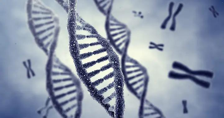 针对输血依赖型β地中海贫血病,首个基因编辑疗法临床试验获批