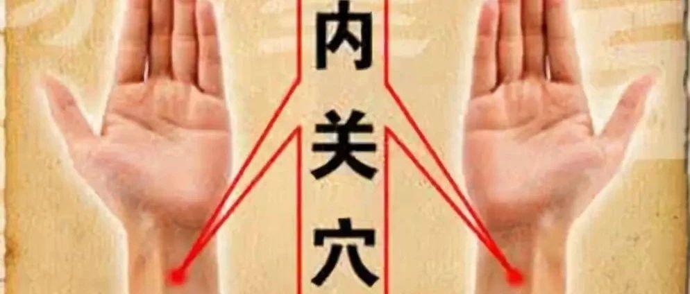 中医基本常识—人体10大重要穴位的功能!