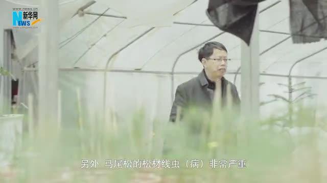 【政协委员履职谈⑥】马祥庆委员:挖掘乡土树种 优化人工林结构