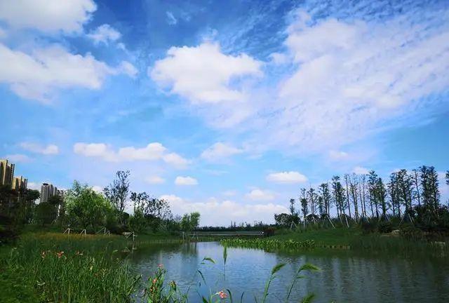 无锡市区新添一座湿地公园!