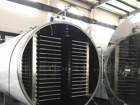 真空冷冻干燥机在蔬菜冻干粉加工应用市场前景