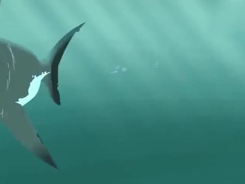 克里斯带着小虎鲸赶紧离开,马丁被大白鲨咬住了